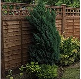 LAP PANEL FENCING COMPANIES IN BRACKNELL