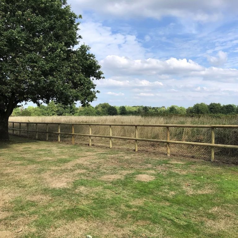Post-rail-fencing-Builder-Ascot