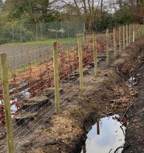 stock fencing in Bracknell