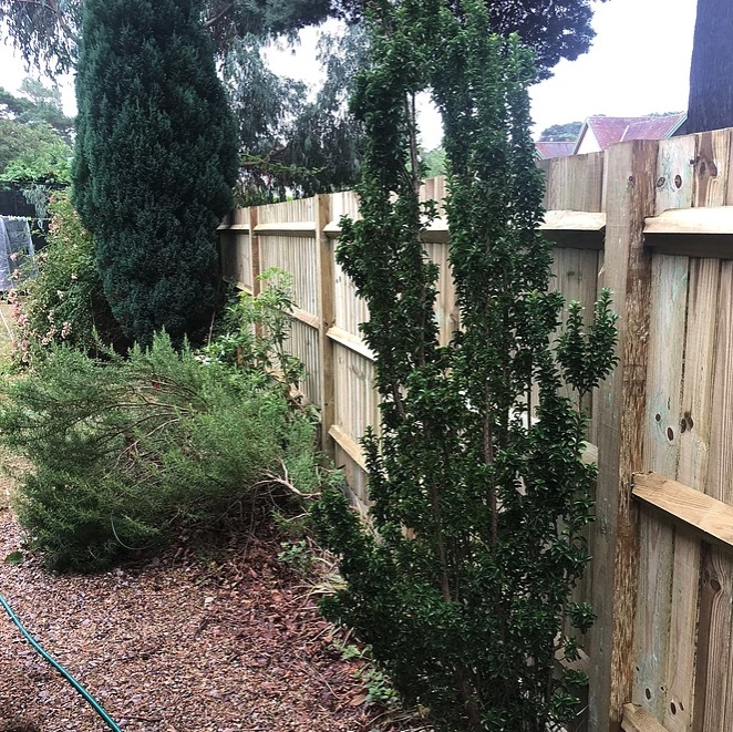 Timber Closeboard Fencing-Installers-Wokigham